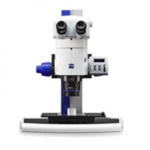 Zeiss Stereo Microscopes